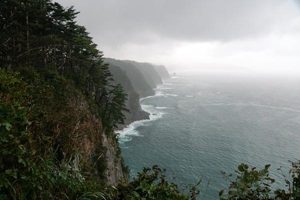 鵜の巣断崖5.JPG