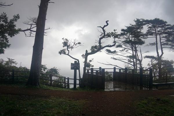 鵜の巣断崖9.JPG
